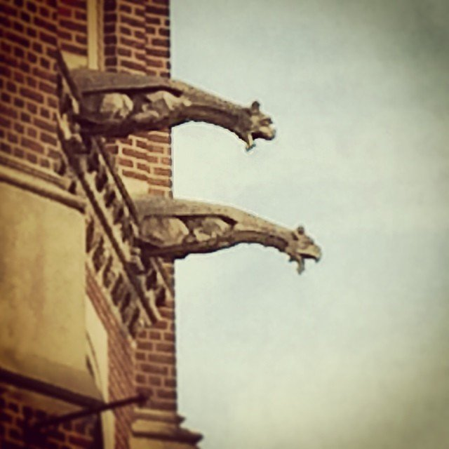 #brooklyn #gargoyles