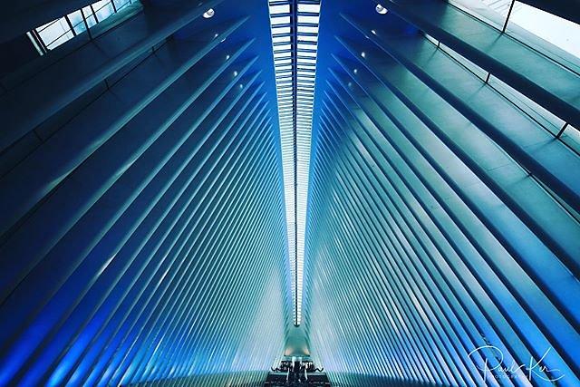 Inside the Oculus transit hub.
